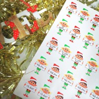 Printed Vinyl Sticker Sheets -Mixed Elf Behaviour Stickers
