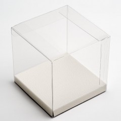 10cm Cube Clear Acetate Gift Boxes